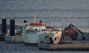 Spanish report calls for killing of more than 850 cattle on pariah ship