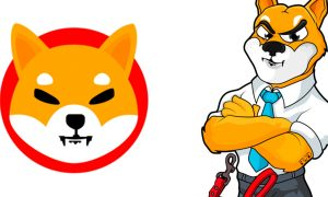 Shiba Inu Coin to siege the future Market for its standing Dynamics